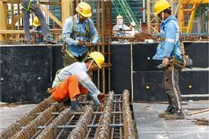 Xử phạt hành chính trong hoạt động đưa người Việt Nam sang làm việc ở nước ngoài